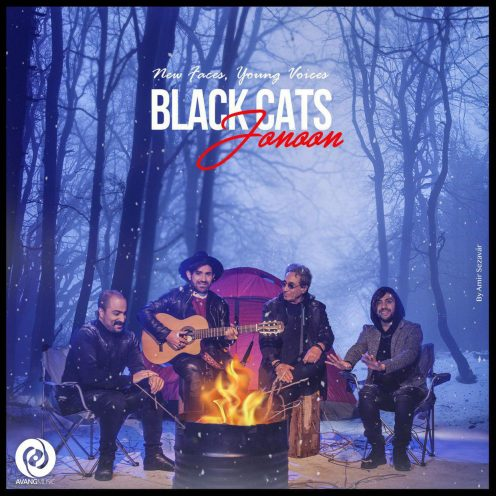 Black-Cats-Jonoon-496x496