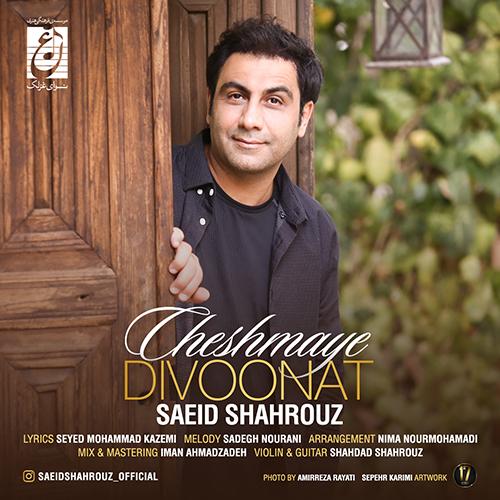 Saeid-Shahrouz-Cheshmaye-Divoonat