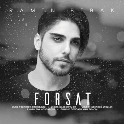 Ramin-Bibak-Forsat-496x496