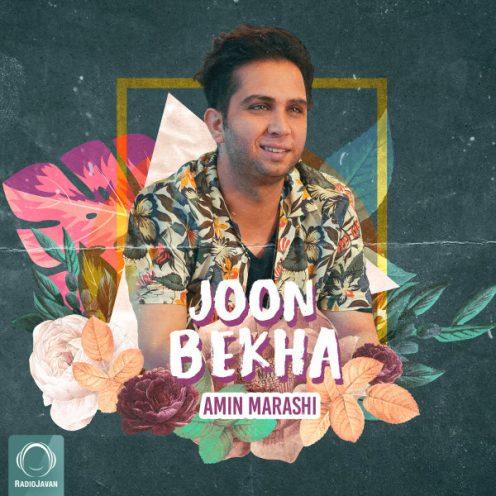 Amin-Marashi-Joon-Bekha-496x496