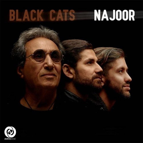 Black-Cats-Najoor-cover