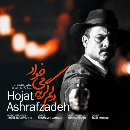 Hojat-Ashrafzadeh-Delam-Gerye-Mikhad-496x496