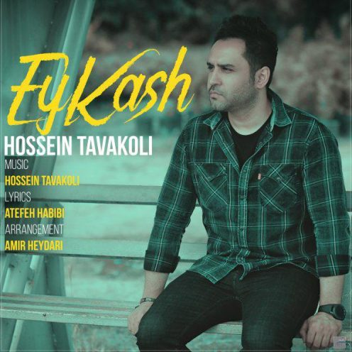 Hossein-Tavakoli-Ey-Kash-496x496