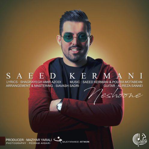 آهنگ نشونه از سعید کرمانی