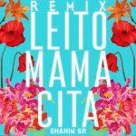 ریمیکس اهنگ ماماسیتا از بهزاد لیتو